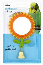 Parrot play mirror