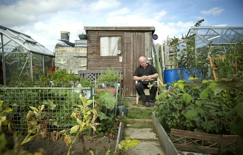 Allotment Adventures Fill Your Life With Home Grown