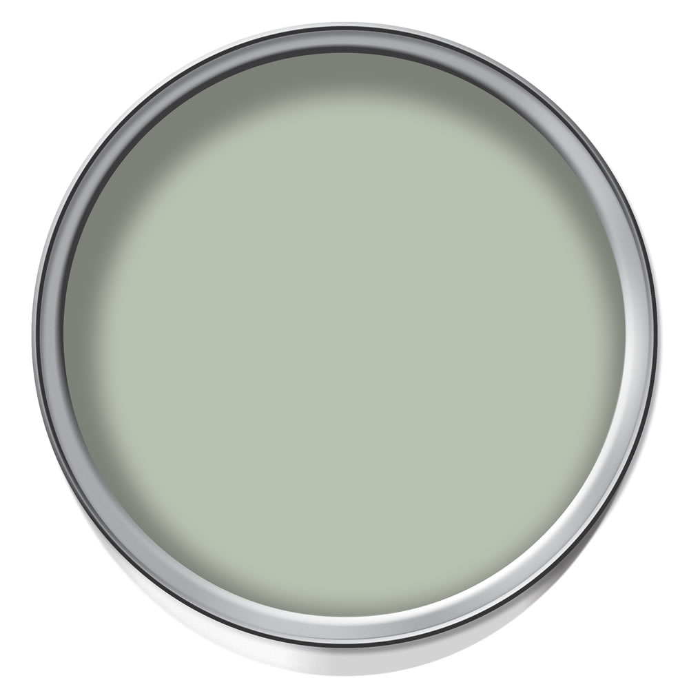 Wilko Kitchen Paint Sage