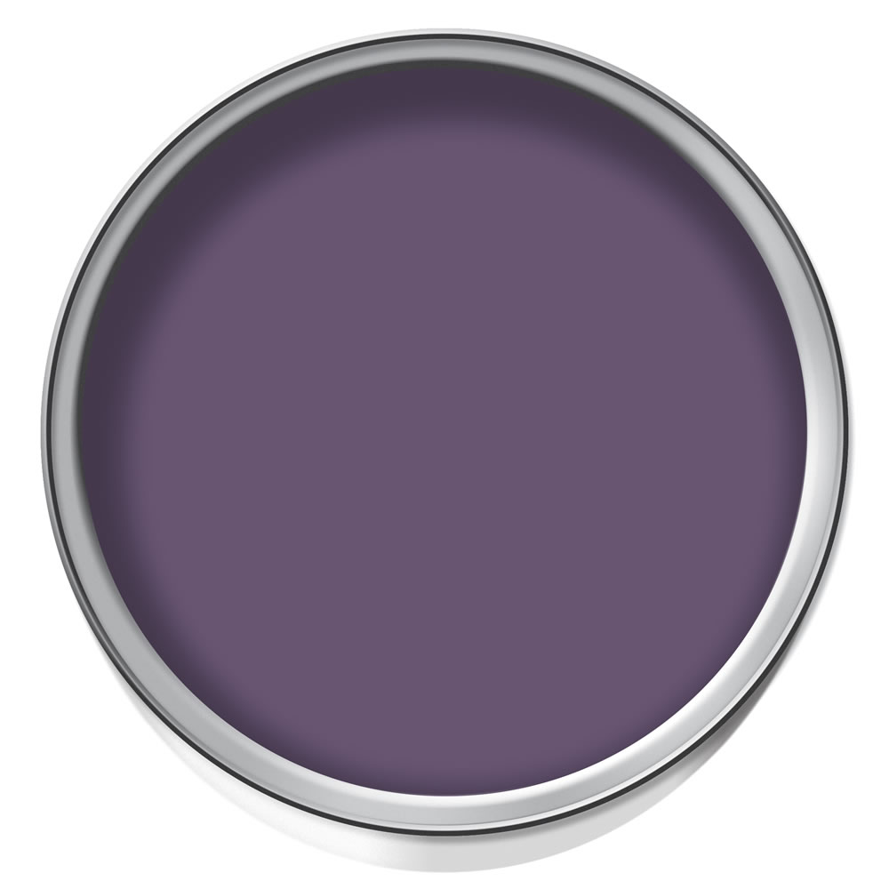 Wilko Statement Paint Deeply Plum