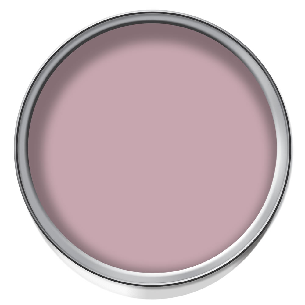 Wilko Flat Matt Emulsion Elegant Rose