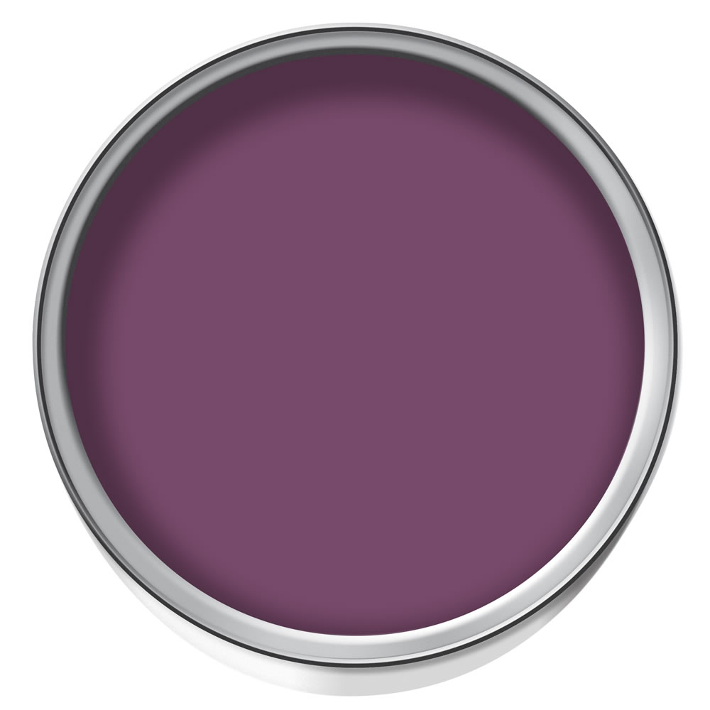 Wilko Durable Matt Emulsion Plum Berry
