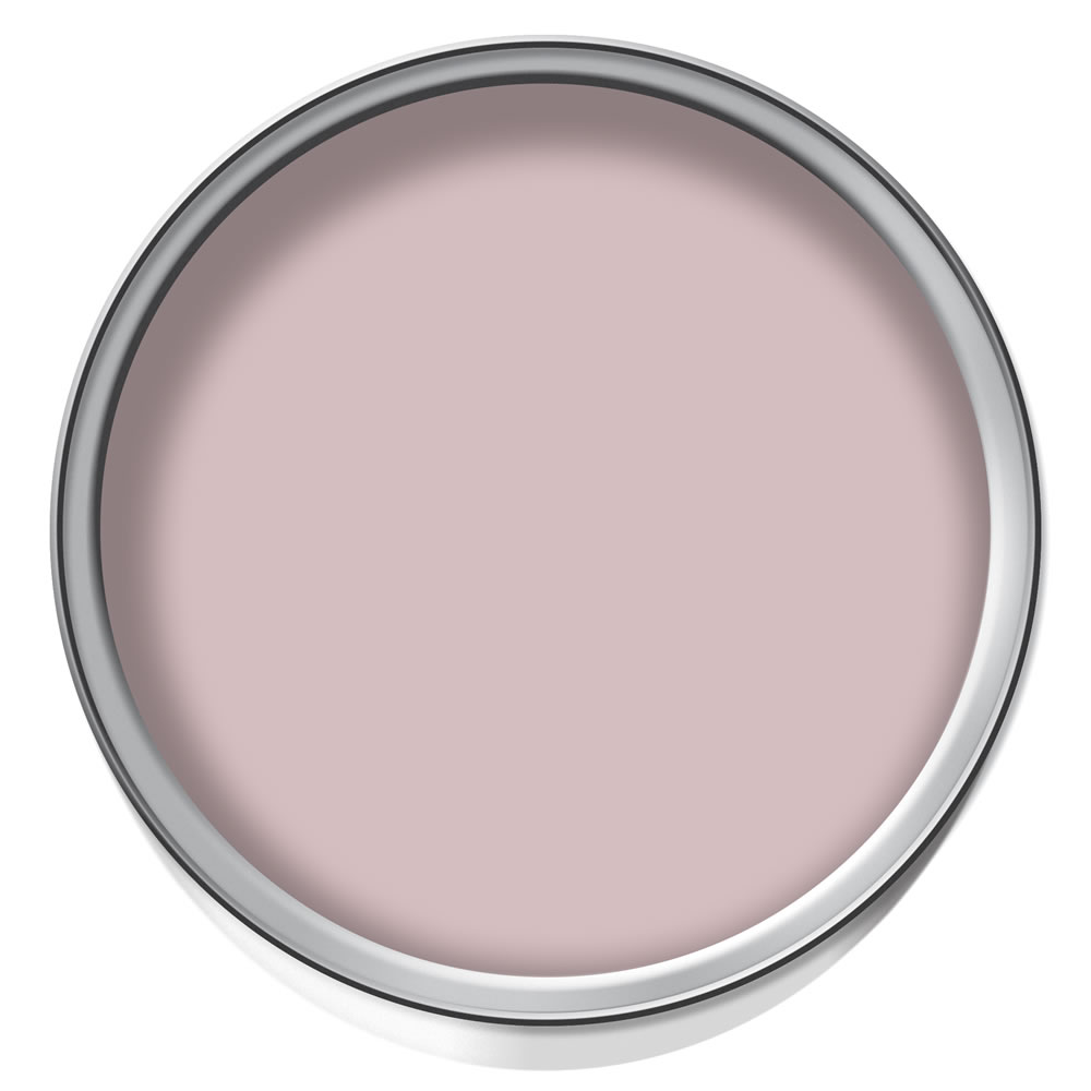 Wilko Durable Matt Emulsion Raspberry Meld