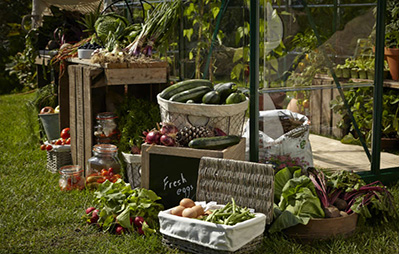 What to do in your garden in March