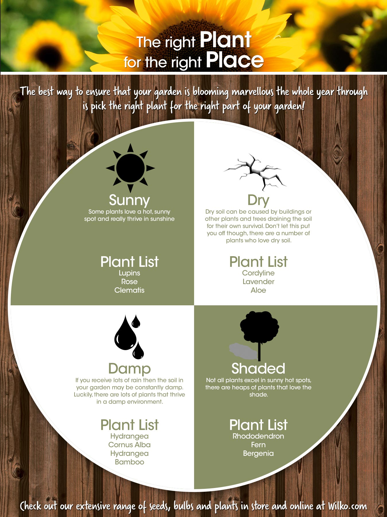 the right plant for the right patch planting guide