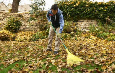 man raking leaves in garden in autumn