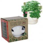 Kitchen herb pot set