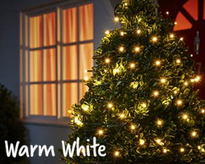 warm white christmas lights