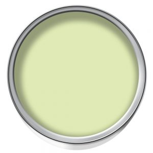lime sorbet paint